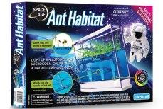Super-Cool Ants