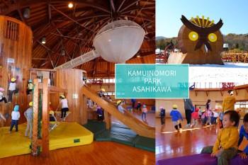 【旭川親子景點】晴天雨天都能玩的神威之森公園(kamuinomori park) 室內室外一樣精彩的森林系樂園