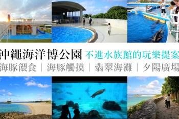不進沖繩水族館的海洋博公園玩樂提案 海豚劇場、海豚餵食、翡翠海灘、夕陽廣場