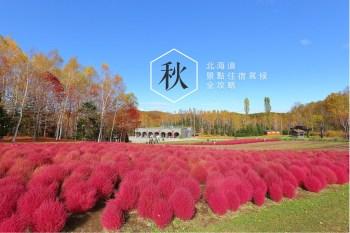 2019北海道秋季自由行懶人包:賞楓銀杏景點、親子自駕行程推薦