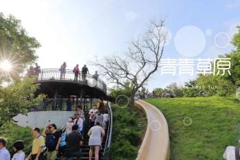新竹親子景點|青青草原溜滑梯放風箏,還能同遊香山濕地賞蟹步道