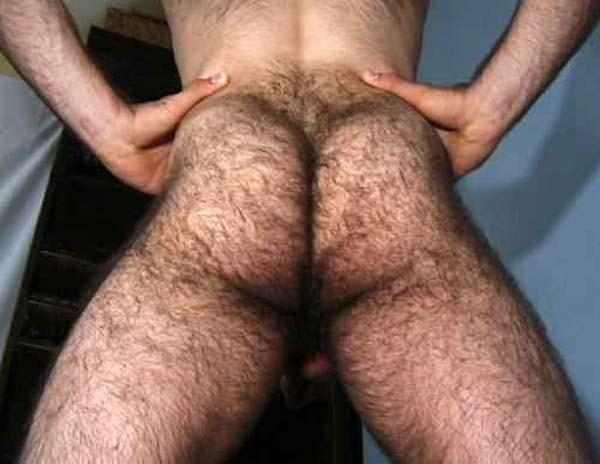 homem super macho bunda peluda