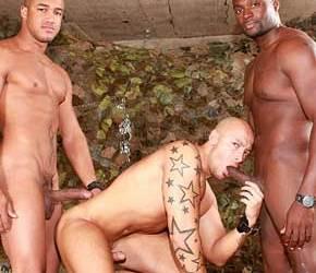 Negro e mulato caralhudo detonando rabudo - Kiern Duecan, Yates e Jordano Santoro