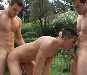 DVD Gay Free - Casa del Sol