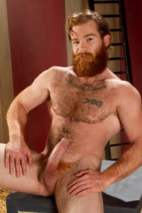 gay ginger hairy chest naked