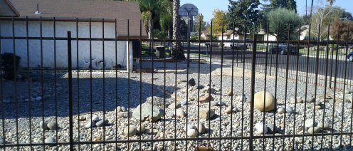 Not so nice to sit in, but a very drought-tolerant front yard. :)