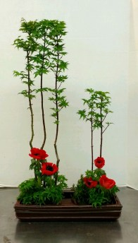 """My ikebana arrangement for """"Vertical Freestyle."""" Japanese maples and anemones."""