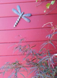 Dragonfly sculpture on the gardening shed, creating a backdrop to one of our Japanese maples.
