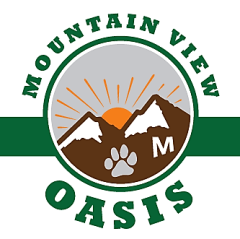 Mountain View Oasis