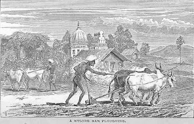 man ploughing in field mysore india