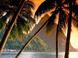 Tropical Island Of Fiji