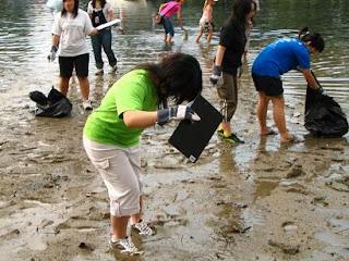 Coastal Clean