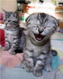 Cute,Rapturously Happy Kitty!