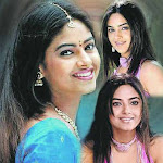 Meera And Sharwanand Paired Up