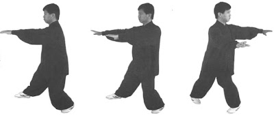 yang jun single whip