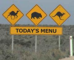 Today's menu - roadkill