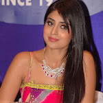 Shriya Best Friends Are Ntr And Nagarjuna