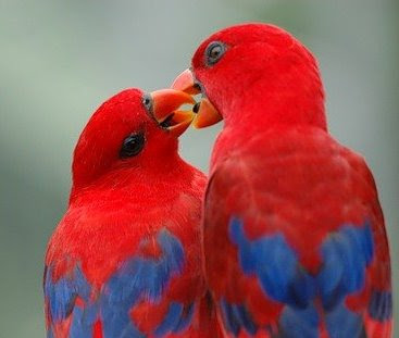 Психолог про любовь, семью и отношения
