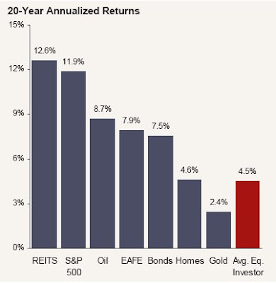 20 Year Annualized Returns for Various Investments