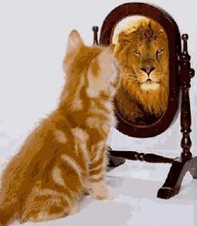 Auto Confiança Blog Do Marcelão