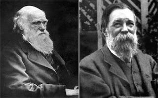 Como Darwin es utilizado por Engels I | Biología y pensamiento