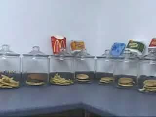 百毒不侵永不腐敗的麥當勞 mcdonalds