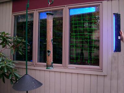 Reflective Window Stickers For Birds Best Bird - Window alert hummingbird decals amazon