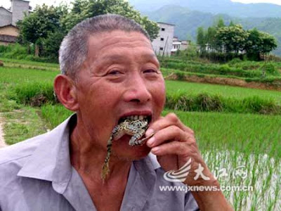 Man Eats Live Frogs and Mice for 40 Years said to cure tummy upsets