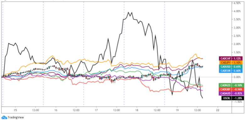 Overlay of CAD Pairs & Oil (Black Line): 1-Hour Forex Chart