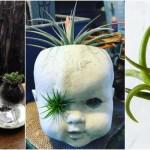 【悪趣味ガーデニング】古い人形で植物を育てる超不気味園芸にハマる人続出