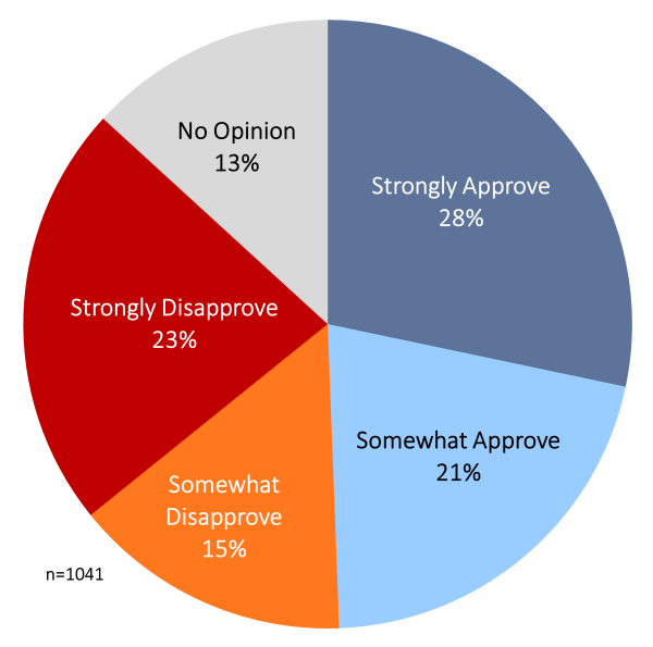 pie chart with percentage of sample that selected approve, disapprove, or no opinion