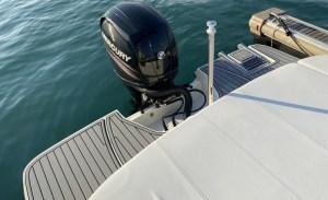 Sea Ray SPX 19