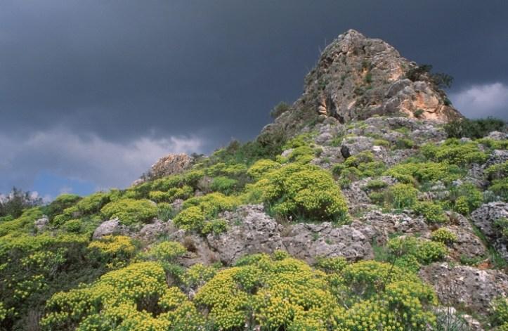 mountain top in Nahal Me'Arot.