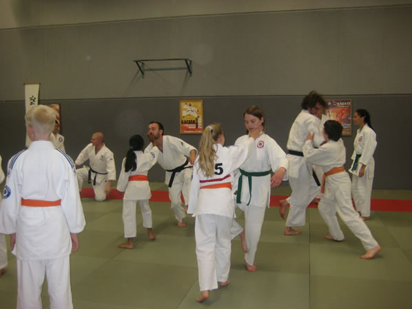 Aikido on one leg