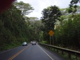 Kauai Hawaii Road