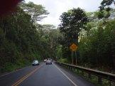 Kauai Hawaii Road