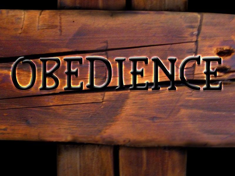 https://i2.wp.com/bradhoffmann.com/wp-content/uploads/2014/01/Obedience.jpg