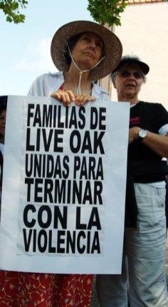 live-oak_7-29-06