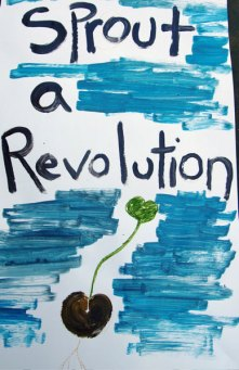 sprout-revolution_7-8-06