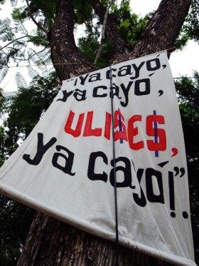 ya-cayo_8-26-06