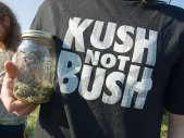 kush-not-bush_4-20-08