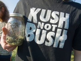 kush-not-bush_4-20-08