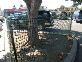 mesh-fence_9-24-08