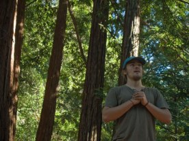 forest-walker_11-8-08