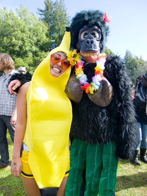 banana-ape-ucsc_4-20-10
