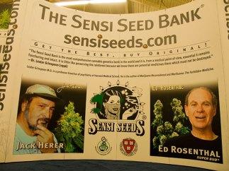 jack-herer_ed-rosenthal_sensi-seeds_4-18-10