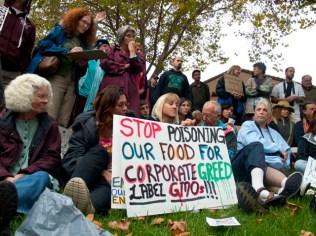 occupy-santa-cruz_11_10-4-11