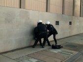 joe-arrested_3_11-30-11