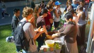 Workshops on Fermentation and Bread Making