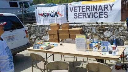 SPCA Veterinary Services